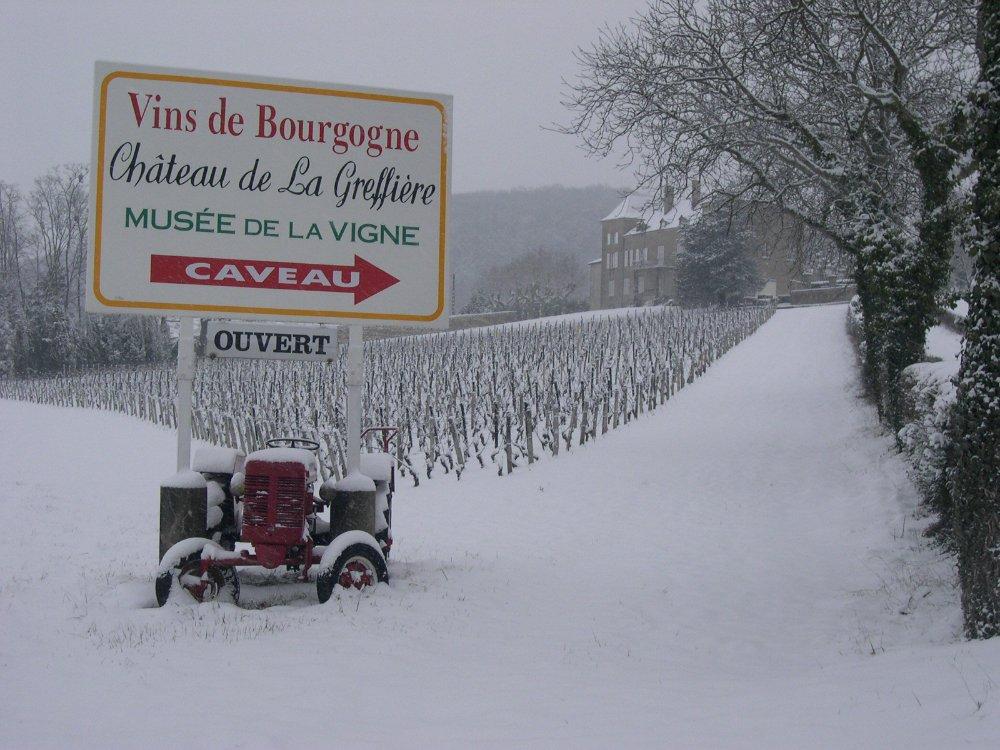 Aire camping-car à Roche-Vineuse (71960) - Photo 5